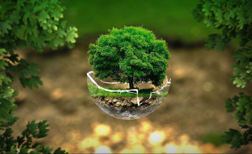 « Économie, écologie, hypocrisie !! » L'édito de Charles SANNAT