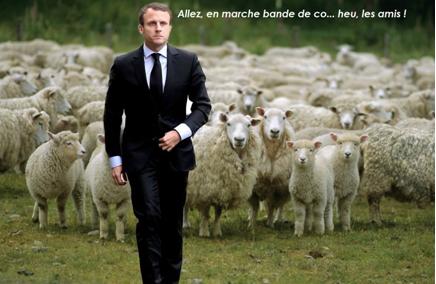 Pourquoi Macron ne fera sans doute-t-il pas grand-chose !