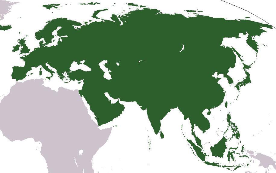 « Vers une alliance Chine-Europe ? » L'édito de Charles SANNAT