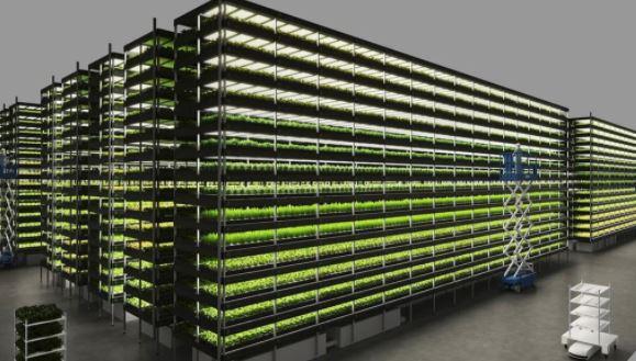 Agriculture et alimentation. Fermes verticales en ville au Danemark !