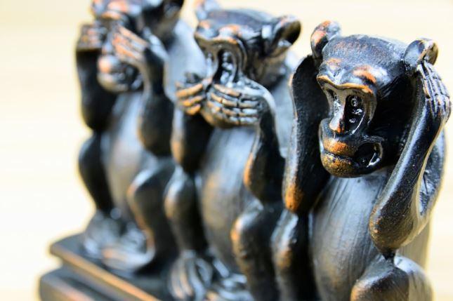 Tests sur des singes et des humains : VW suspend un responsable