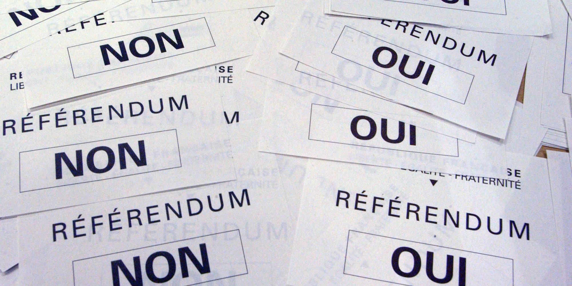 « Le référendum est-il la bonne solution ? »