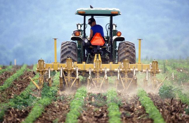 + 24 % de pesticides cette année en France ! Gréta s'étouffe. L'écologie aussi.